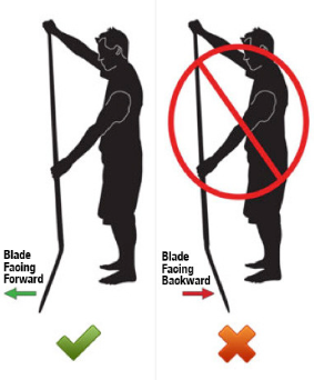 A diagram showing you how to hold a sup paddle correctly.