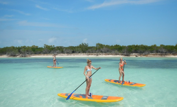 Three women paddleboarding in Key West, Florida.